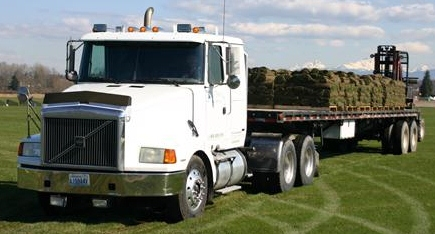 Turf Grass Sod Delivery in Baton Rouge, Denham Springs, South Louisiana