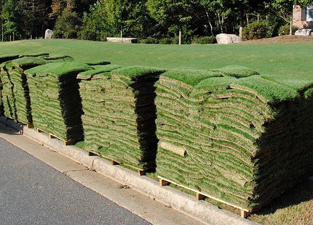 pallets of sod grass